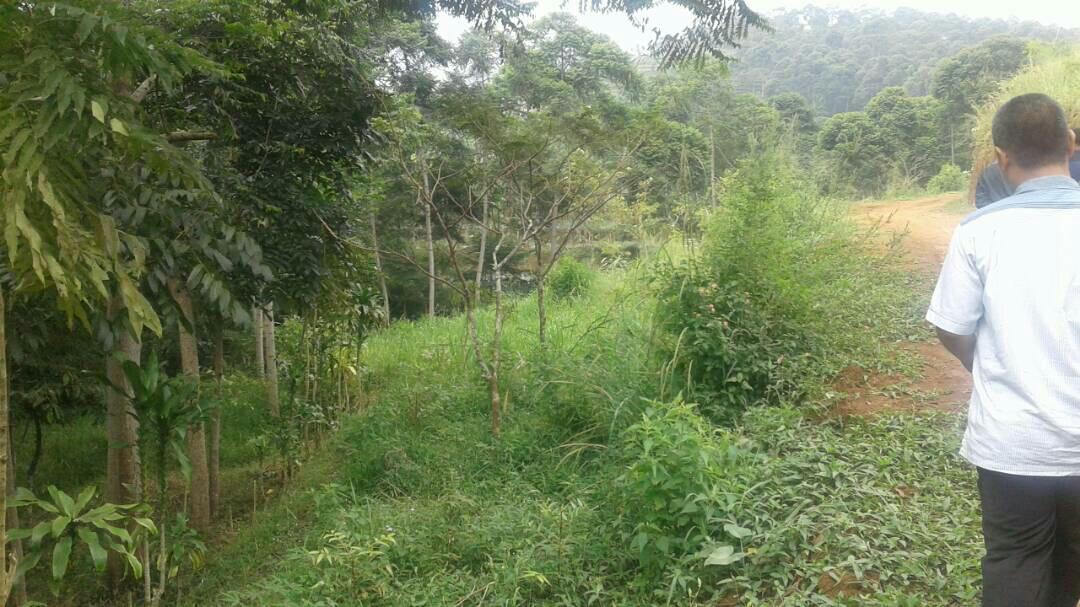 siteplan-3a-kampung-quran-mataqu-2