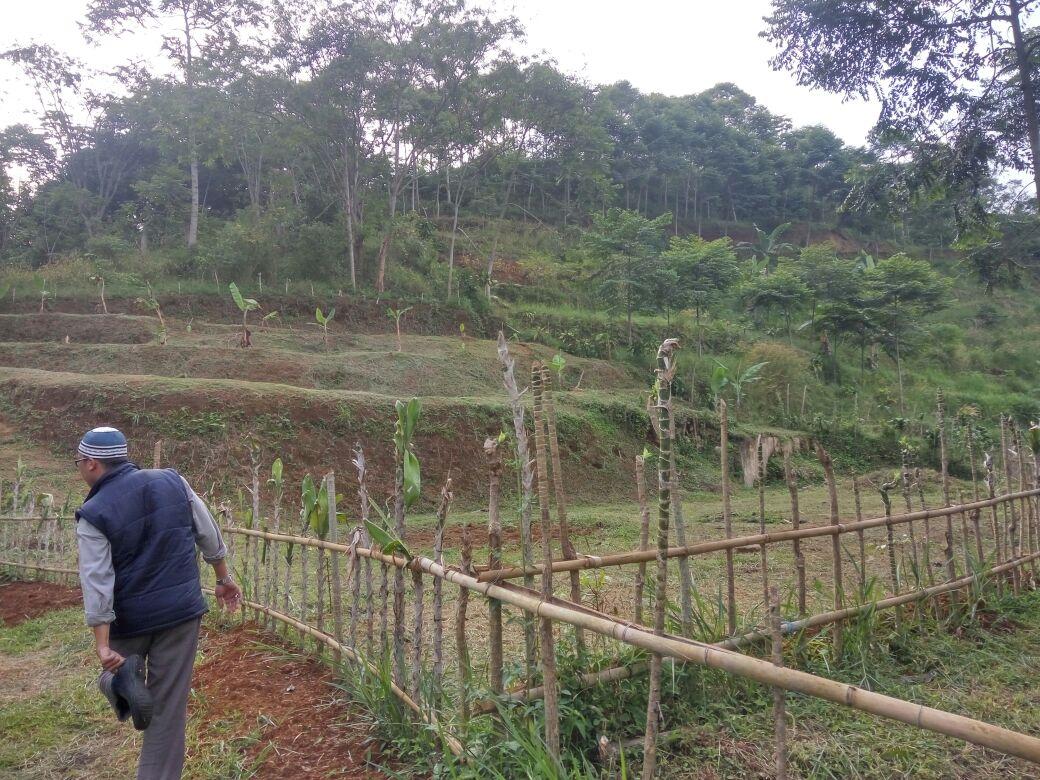 kebun-kampung-quran-puncak-cipendewa