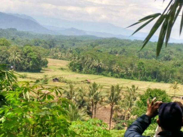 foto-lokasi-kampung-kurma-jasinga