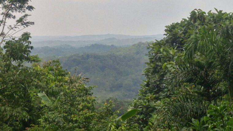 pemandangan-lokasi-kampoeng-buah-naga-purwakarta