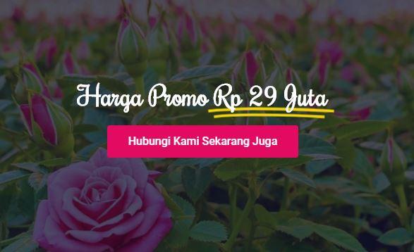 promo-bukit-mawar